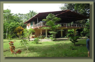 Beachfront House with 2 Ha of Gardened Land and 200 metres of Beach, close to river and beautiful Mangrove complex.